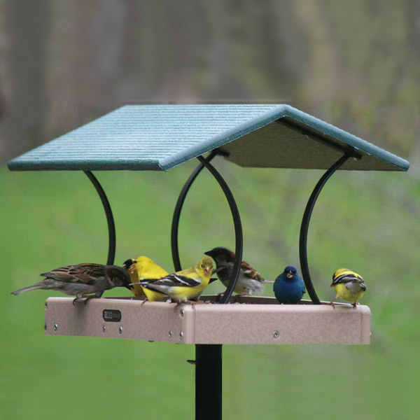 Birds Choice Recycled Fly Thru Feeder With Green Roof - Large