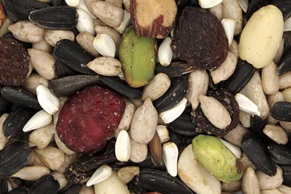 Bird Seed Blends and Mixes