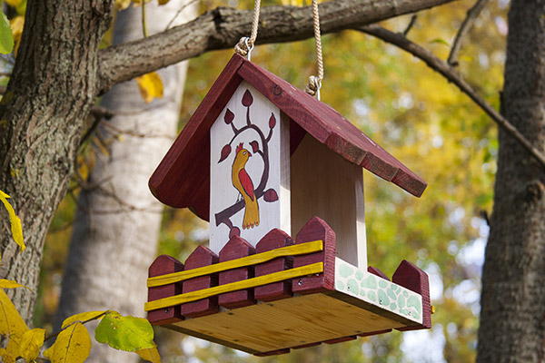 decorative bird feeder hanging from a branch in the fall