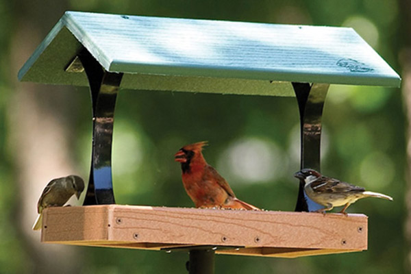 Recycled Green Feeder