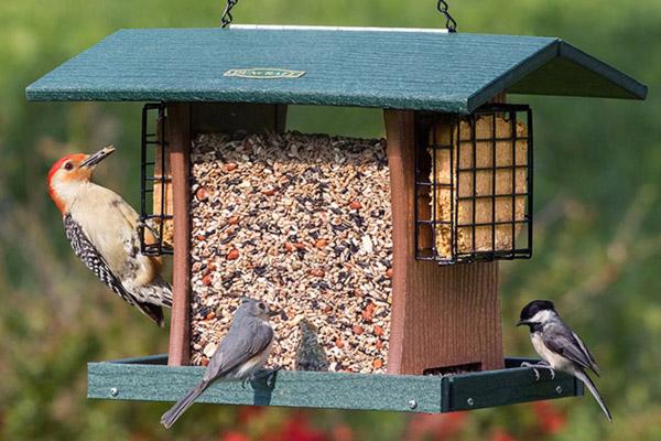 Hopper style bird feeder